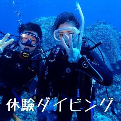 沖縄慶良間半日体験ダイビング2名様以上