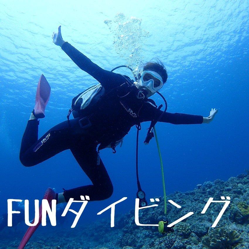 沖縄慶良間半日ファンダイビングのイメージその1