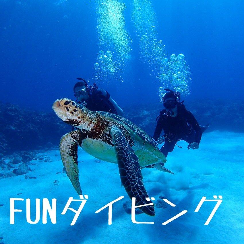 沖縄慶良間半日ファンダイビング2名様以上のイメージその1