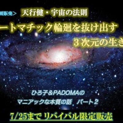 高ポイント【動画販売】 オートマチック輪廻を抜け出す3次元の生き方 ひろ子&PADOMAの マニアックな本質の話パート2 【天行健・宇宙の法則】