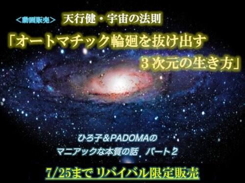 高ポイント【動画販売】 オートマチック輪廻を抜け出す3次元の生き方 ひろ子&PADOMAの マニアックな本質の話パート2 【天行健・宇宙の法則】のイメージその1