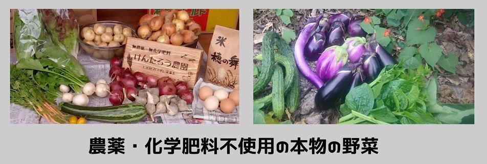【現地払い専用】3/6限定 おすそ分けマルシェ 荒木商店(けんたろう農園)の500円チケット のイメージその2