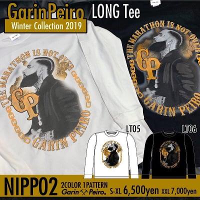 NIPPO2