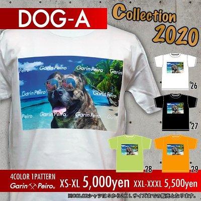 DOG-A/Garinpeiro(ガリンペイロ)Tシャツ