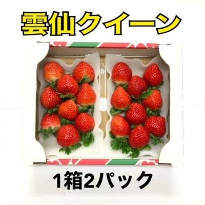 長崎産 甘くて濃い朝採り完熟いちご雲仙クイーン
