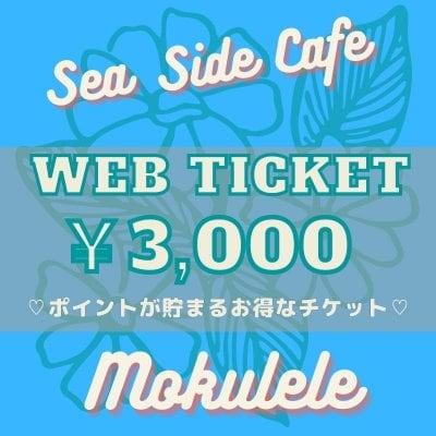 【現地払い専用】ポイントが貯まるお得なウェブチケット『3,000円』