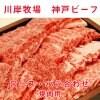 最高級神戸ビーフ  ロース・バラ合わせ  焼肉用    500g   川岸牧場