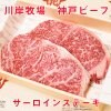 最高級神戸ビーフ  サーロインステーキ  2枚入り  360g   川岸牧場 【送料無料】