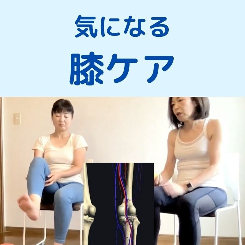 デスクワーク下半身太り|かんたんセルフケア動画|ヒップアップ・太ももやせ・膝ケアのイメージその4