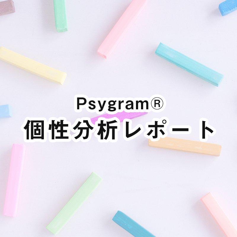 個性分析レポート(Psygram®)のイメージその1