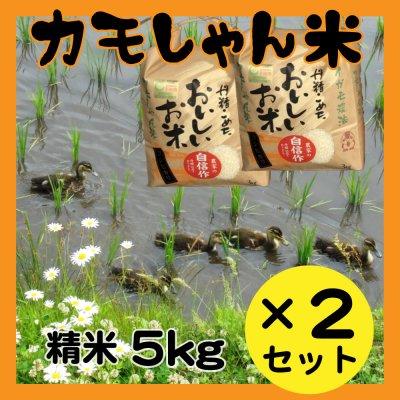 令和2年産【カモしゃん米】精米5kg:2個セット