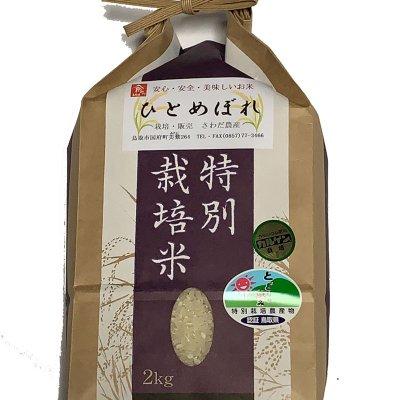 令和元年度鳥取産ひとめぼれ10K(5kgx2袋でも可)特別栽培米