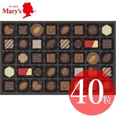 メリーチョコレート ファンシーチョコレート FC-SH(季節限定 10月〜4月)