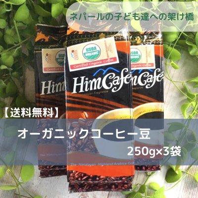 【送料無料】オーガニックコーヒー<豆のまま>250g×3袋/ネパール生まれ...