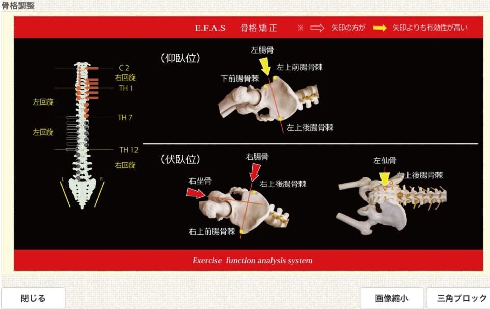 【オンライン】バランス整体(1回)⭐1日3名様限定⭐〜宮城県栗原市の関村接骨院 骨盤矯正、交通事故治療のイメージその3