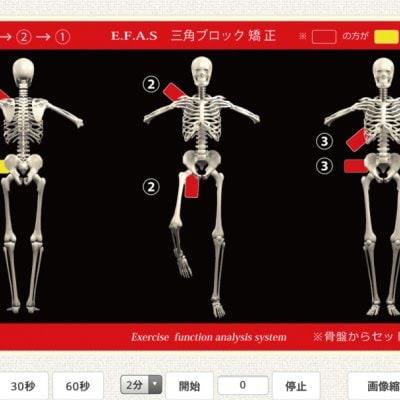 【オンライン】バランス整体(1回) 〜運動機能分析イーファス AIが体の不調を見つけ出します〜宮城県栗原市の関村接骨院 骨盤矯正、交通事故治療