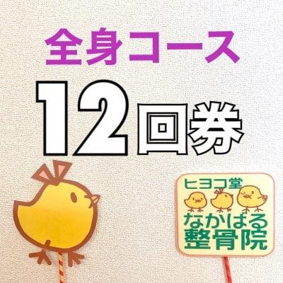 【12回券】全身コース 回数券