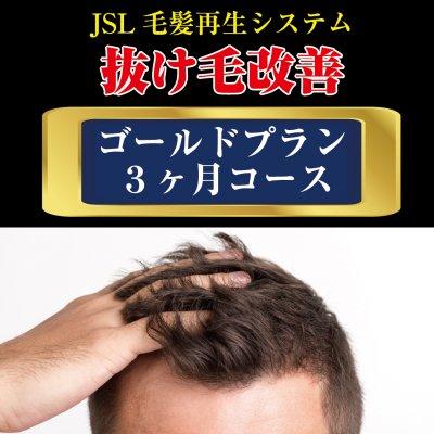 【育毛】ゴールドプラン(3ヶ月コース)