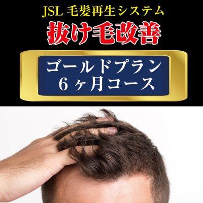 【育毛】ゴールドプラン(6ヶ月コース)