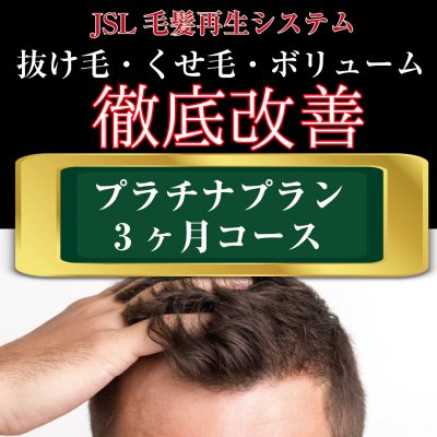 【育毛】プラチナプラン(3ヶ月コース)