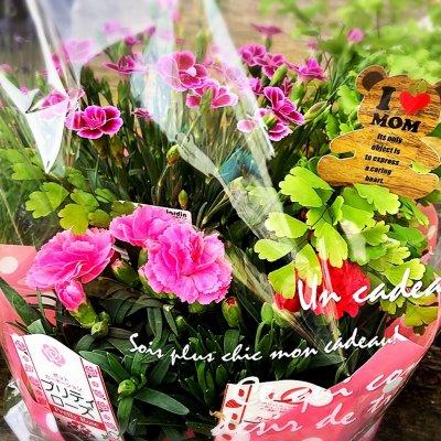 お手軽☆【季節の寄せ鉢】