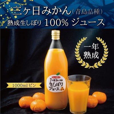 三ヶ日みかん(青島品種)熟成生しぼり100%ジュース 2本セット 1ℓビン