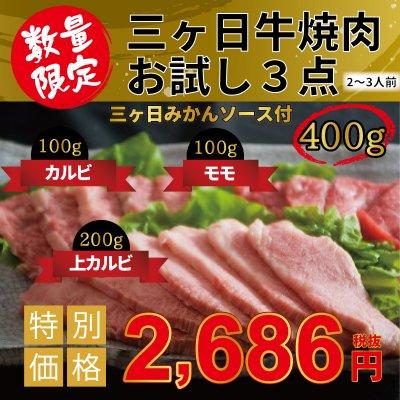 【5月までの限定】三ヶ日牛焼肉お試し3点400Gセット 三ヶ日みかんソース付き
