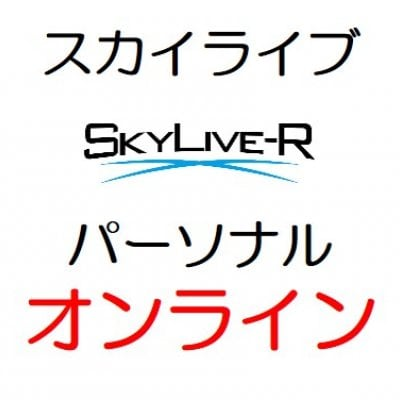 スカイライブ パーソナル(オンライン)基本料金