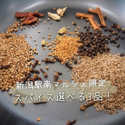 【新潟駅南マルシェ限定】選べるスパイス3品