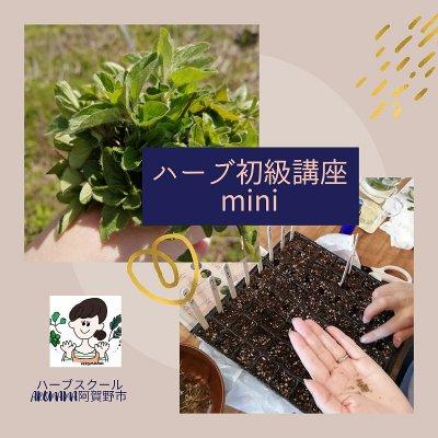 6/2(水)ハーブ初級講座mini〜染め物〜