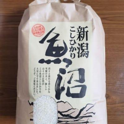 【高ポイント】無農薬/白米5キロ/魚沼産コシヒカリ
