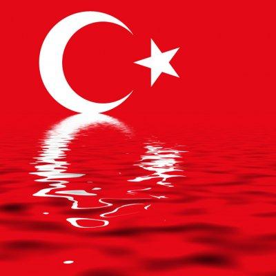 トルコ語翻訳/原文のトルコ語1ワードあたり23円/5ワード分の料金です。