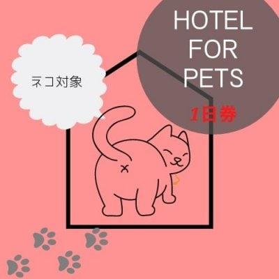 ペットホテル1日券 【ネコ専用】