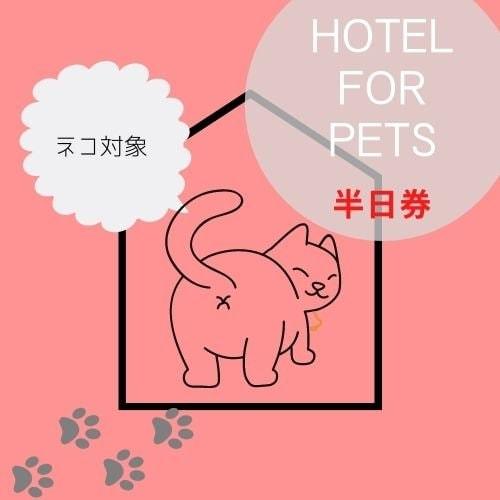 ペットホテル半日券 【ネコ専用】のイメージその1