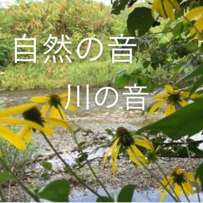 【動画使用OK】自然の音「川の音」