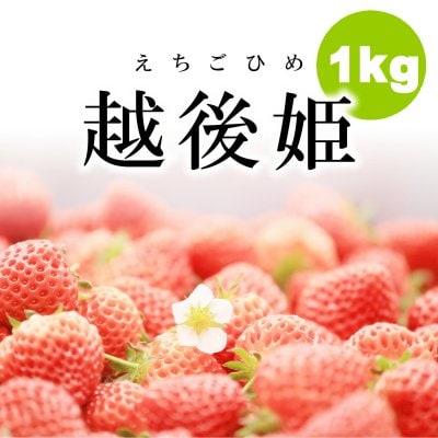 【訳あり・冷凍いちご】1kg新潟・越後姫(えちごひめ)加工用/飲食店にオススメ/冷凍品同梱可