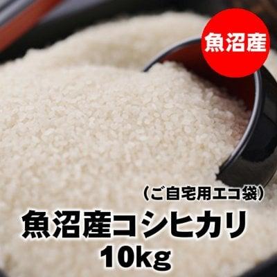 【訳あり少雪&コロナ在庫処分】10kg魚沼産コシヒカリ精米(エコ袋)令和元年産|常温同梱可能