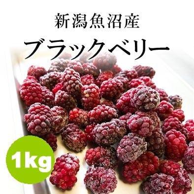 【訳あり】新潟魚沼産ブラックベリー冷凍1kg/加工用/飲食店にオススメ/...