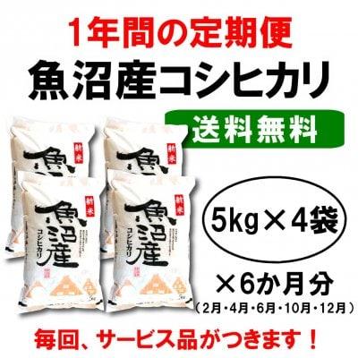 【送料無料】産地直送|魚沼産コシヒカリ定期便|1年間お取り寄せ(6ケ月分×(5kg×4袋))