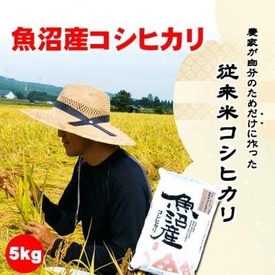 【令和2年産】食味スコア87/農家が自分のためだけに作る従来米新潟魚沼産こしひかり5kg/生産者:島田栄一/常温同梱可