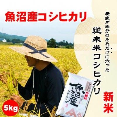 【令和2年産新米】食味スコア87/農家が自分のためだけに作る従来米魚沼産こしひかり5kg/生産者:島田栄一/常温同梱可