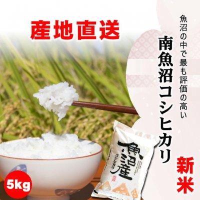 【令和2年産新米】食味スコア86/新潟で最も評価の高い地域/南魚沼産こしひかり5kg/常温同梱可