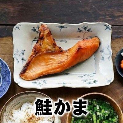 【訳あり業務用】希少な贅沢部位/サーモンかま1枚/鮭/魚*/冷凍品同梱可能