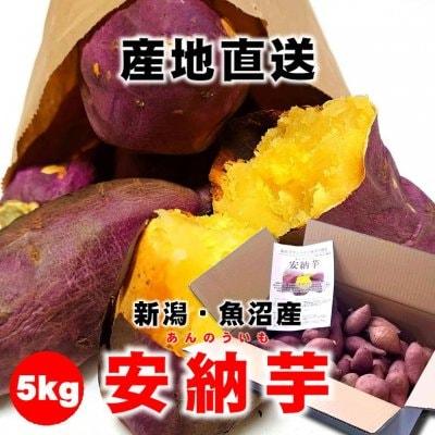 【新潟県魚沼産】安納芋(あんのういも)/5kg/さつまいも/常温品梱可能