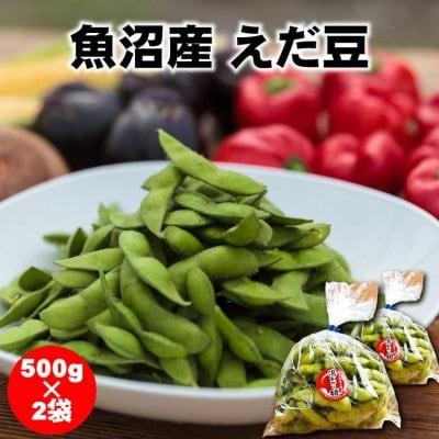 【季節限定】新潟/魚沼産えだ豆/500g×2パック/産地直送[冷蔵品]/越季(...