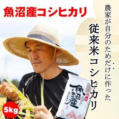【令和3年産新米】新潟魚沼産コシヒカリ5kg/農家が自分のためだけに作る...