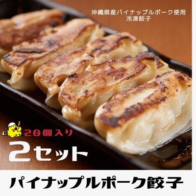 【20ヶ入×2セット】沖縄県産豚パイナップルポーク冷凍ぎょうざ