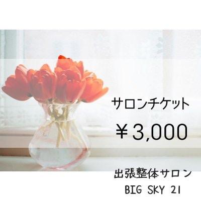 サロンチケット 3,000円