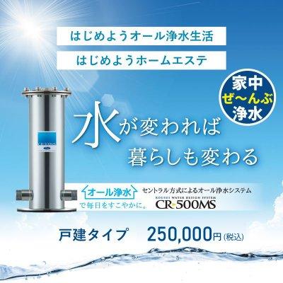 一般一戸建て用オール浄水器(250,000円)