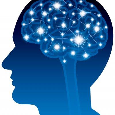 【シングルマザー自立の会メンバー専用】脳診断テスト・ブレインアナリシステスト 脳から強みや適性を知って人生をクリエイトしよう!